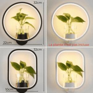 Lampe murale végétale 2 en 1